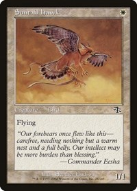 Suntail Hawk, Magic: The Gathering, Judgment