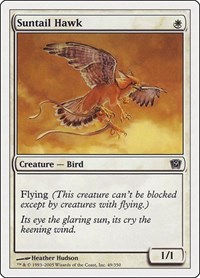 Suntail Hawk, Magic: The Gathering, 9th Edition