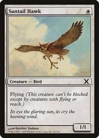 Suntail Hawk, Magic: The Gathering, 10th Edition