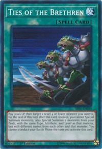 Ties of the Brethren, YuGiOh, Structure Deck: Wave of Light