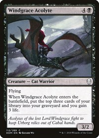 Windgrace Acolyte, Magic: The Gathering, Dominaria
