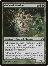 Orchard Warden, Magic, Morningtide
