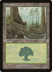 Forest (348), Magic: The Gathering, Mercadian Masques