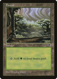 Forest (Cloudy), Magic: The Gathering, Tempest