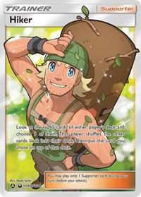 Hiker, Pokemon, Hidden Fates: Shiny Vault
