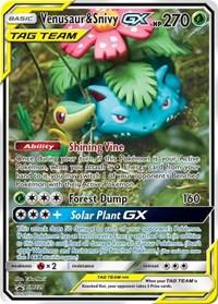 Venusaur & Snivy GX - SM229, Pokemon, SM Promos