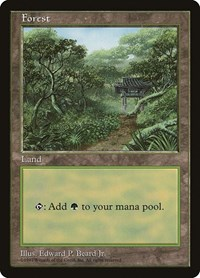 Forest - Clear Pack (Beard, Jr.), Magic: The Gathering, APAC Lands