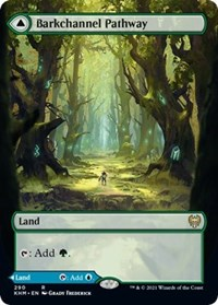 Barkchannel Pathway (Borderless), Magic: The Gathering, Kaldheim