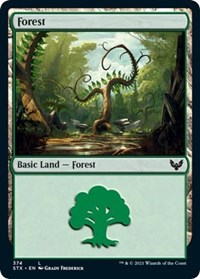Forest (374), Magic: The Gathering, Strixhaven: School of Mages
