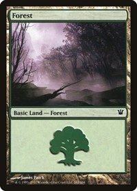 Forest (262), Magic: The Gathering, Innistrad