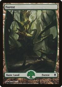 Forest (247) - Full Art, Magic: The Gathering, Zendikar