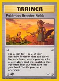 Pokemon Breeder Fields, Pokemon, Neo Revelation