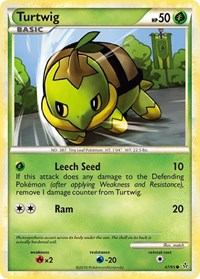 Turtwig, Pokemon, Unleashed