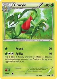 Grovyle, Pokemon, XY - Primal Clash